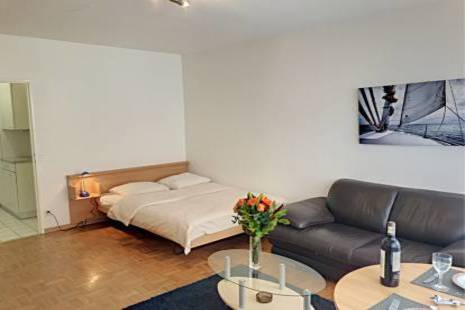 Functional Fully Furnished Apartment, Close to the center of Geneva