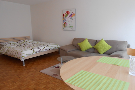 This nice fully furnished studio apartment is located in a quiet district nearby the center of Geneva. At 5 minutes walking d