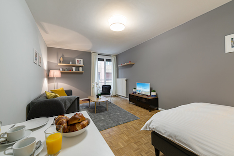 This new studio is very well located in a calm street in the Geneva Center. It is situated between the train station and the Geneva lake. The kitchen and the bathroom have been completely renovated and the living room is spacious and pleasant. The apartment is without lift on the second floor.